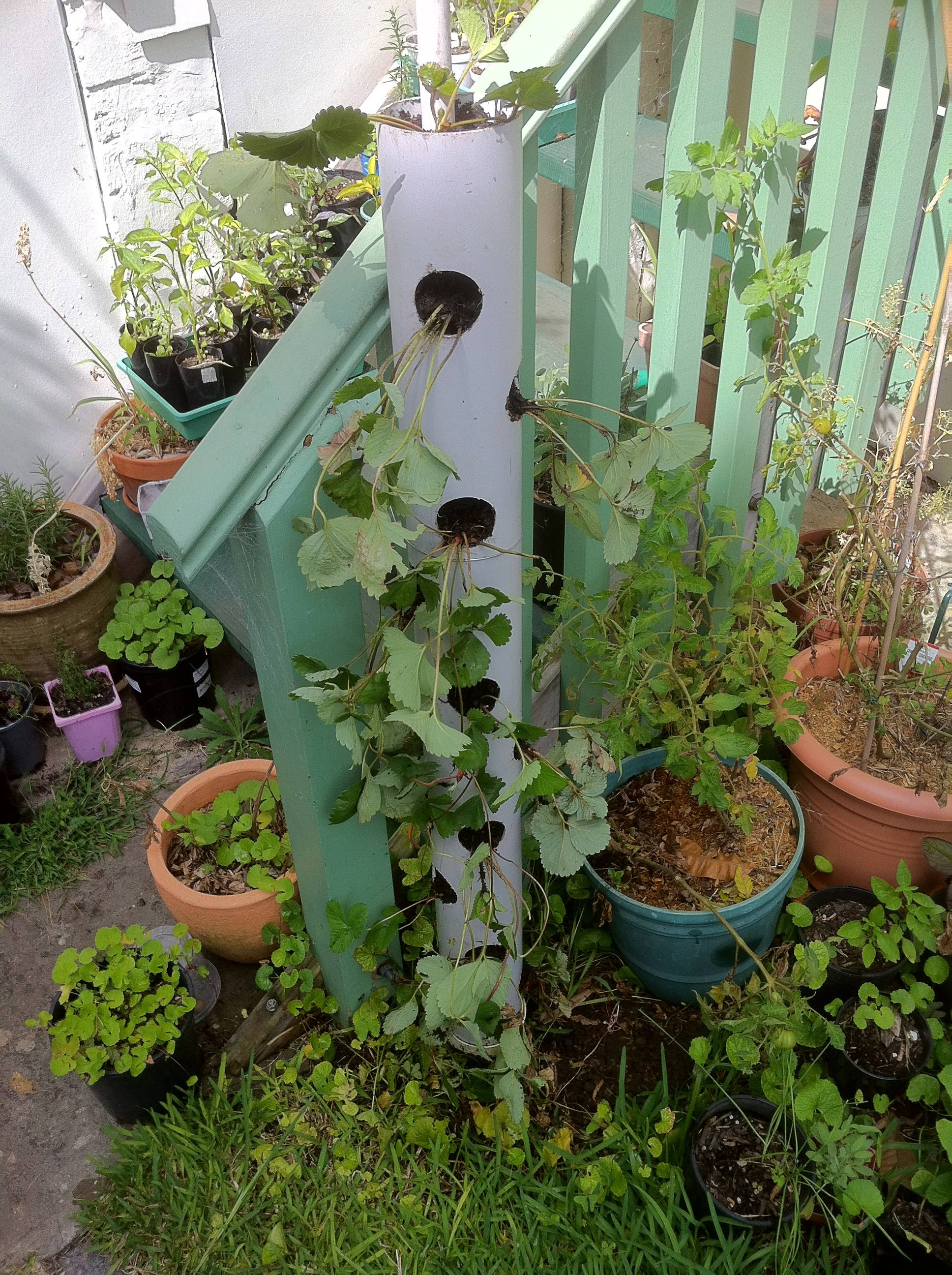 how to make a vertical strawberry tube planter urban