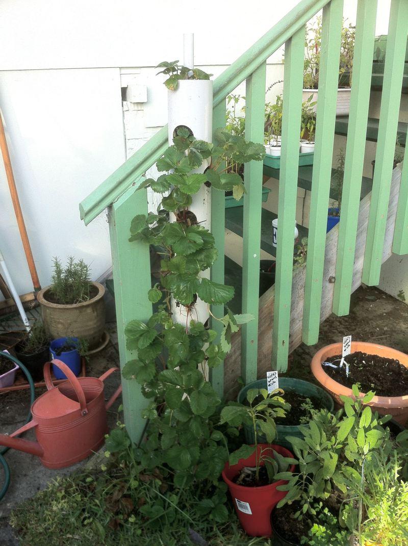 planter plans