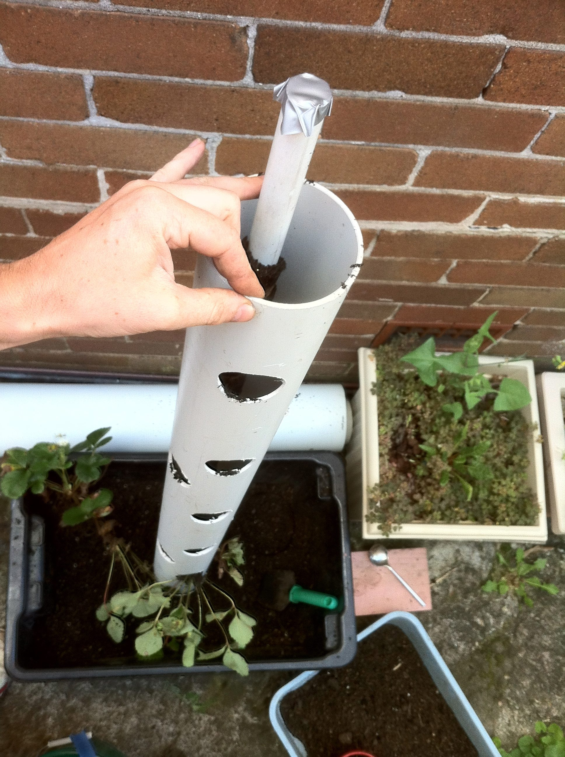 How to make a vertical strawberry tube planter urban Garden tube