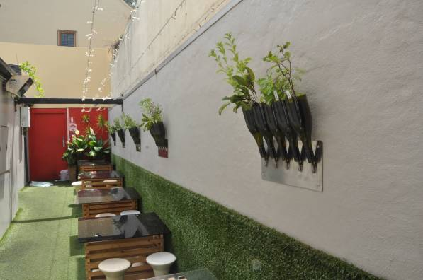 A herb garden on the wall at Sydney restaurant, Yulli's